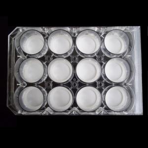 12-well-plate-600x600