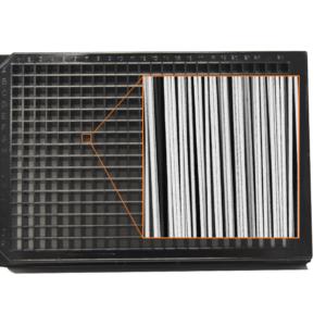 Aligned fibres in 384 well plate V2
